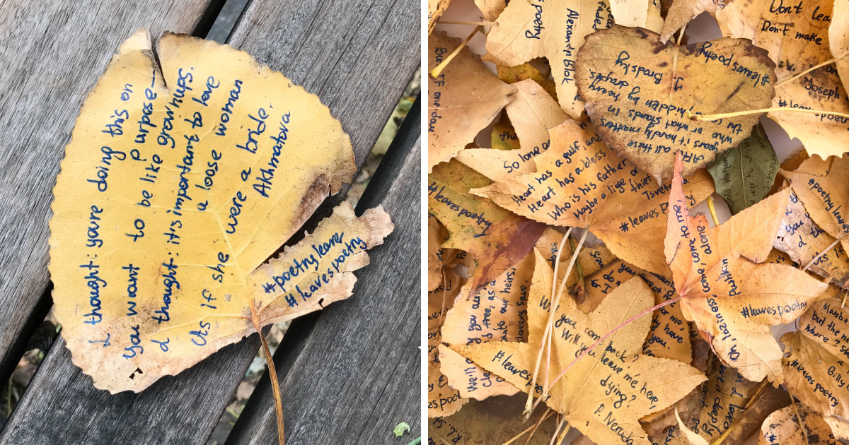 I Left 86 Leaves With Handwritten Poetry In NYC Parks For People To Find