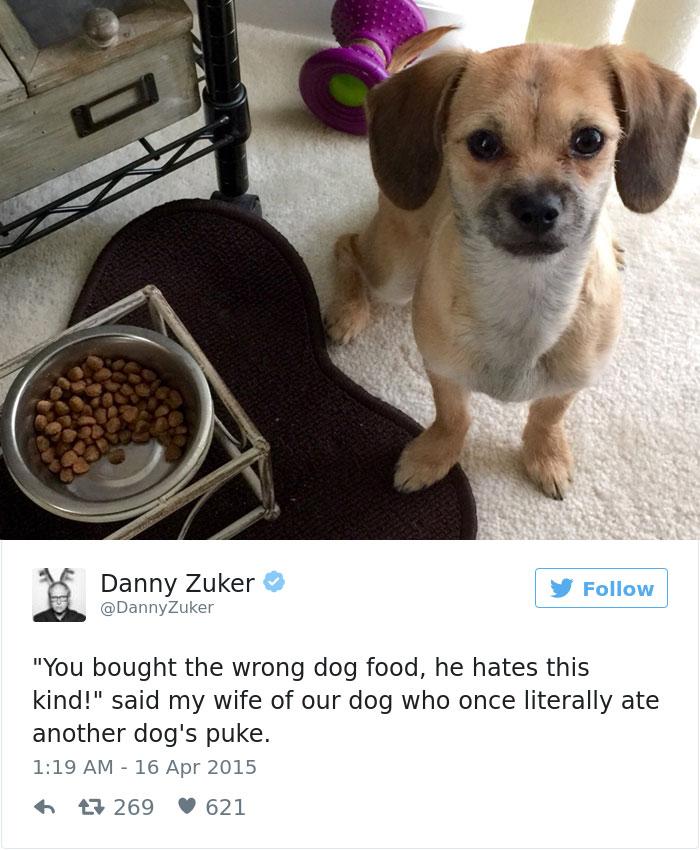 Constipated Dog Pet Owner