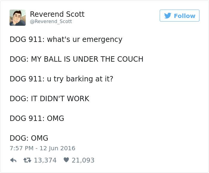 Dog Tweets