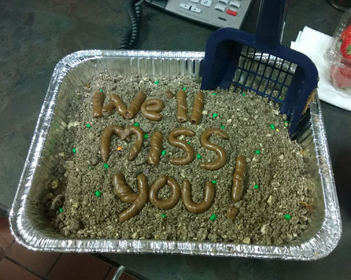 The Kind Of Farewell Cake You Get For Your Last Day At A Vet Office
