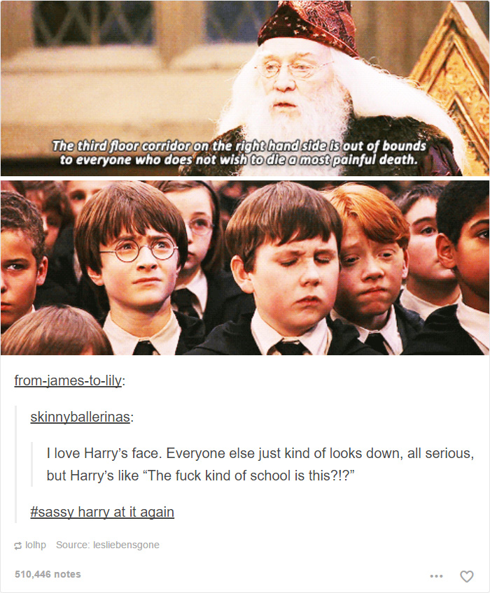 Harry Potter Tumblr Posts That Are Impossible Not To Laugh At - 20 times tumblr made everyone laugh at america