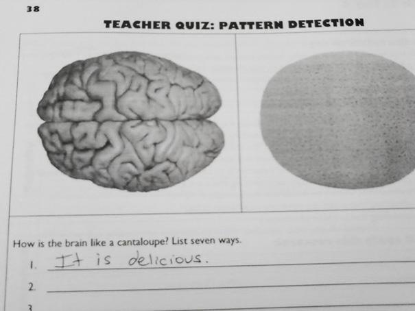 Mmm Brain