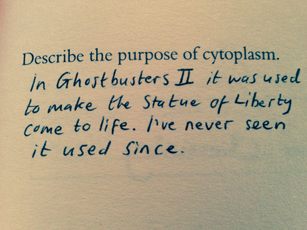 The Purpose Of Cytoplasm