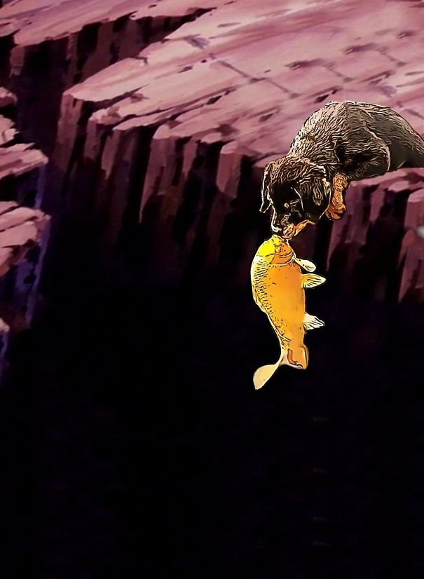 The Fish Of The Chasm