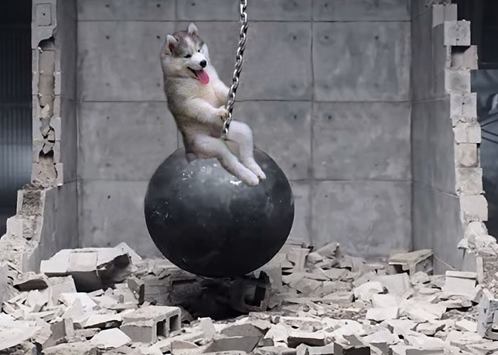 Came In Like A...