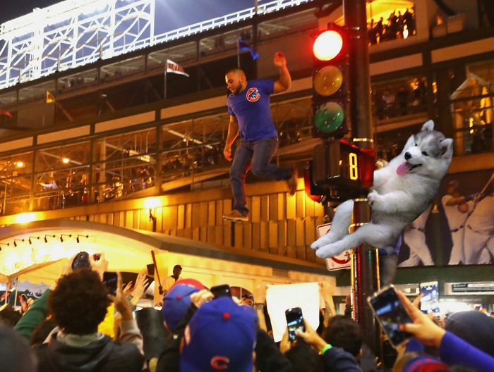 Just Another Cubs Bro.