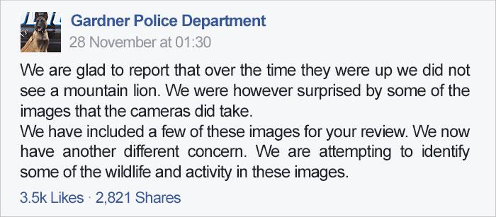 police-camera-find-mountain-lion-kansas-14a