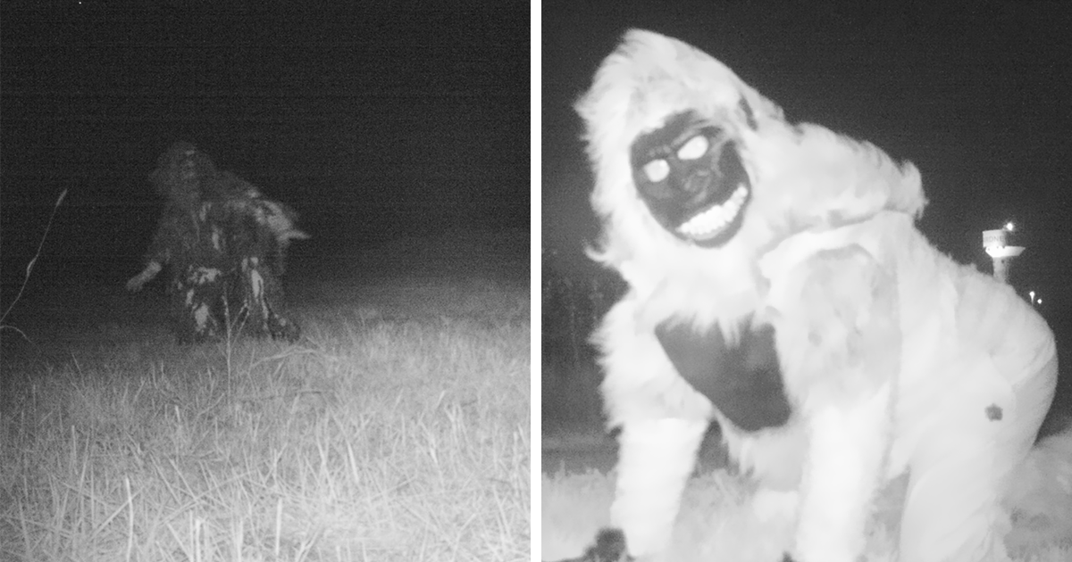 Police Set Up A Camera To Find A Mountain Lion, But They Weren't Prepared For What They Found Instead