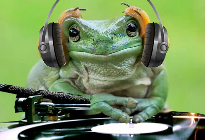 Dj Frog