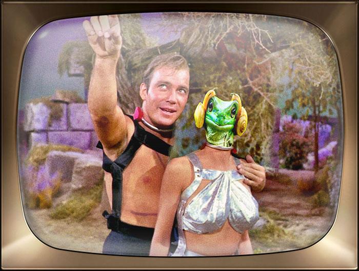 Captain Kirk Always Gets The Girl