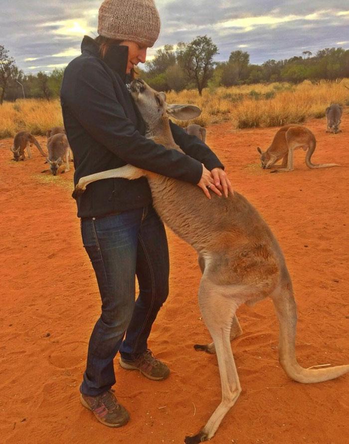 rescued-hugging-kangaroo-abigail-australia-3