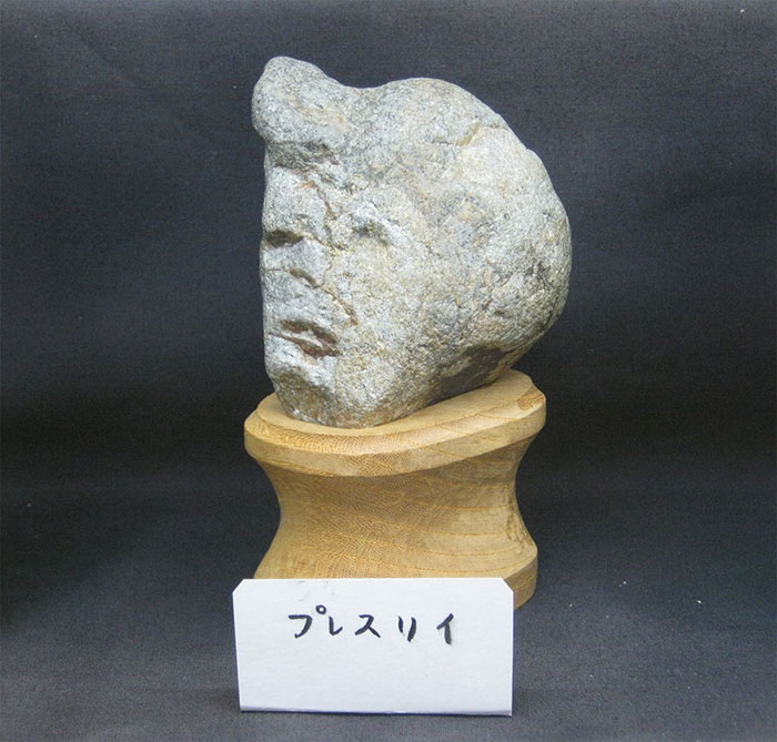 rocks-look-like-faces-museum-chinsekikan-hall-of-curious-rocks-japan-46
