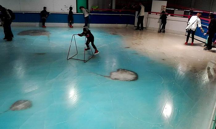 skating-rink-freeze-fish-ice-japan-8
