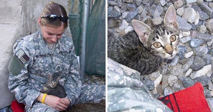 This Soldier Refused To Leave Sick Kitten Behind In Afghanistan