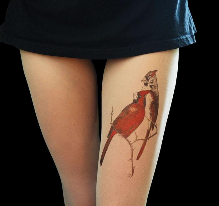 Birds Cardinal Tights