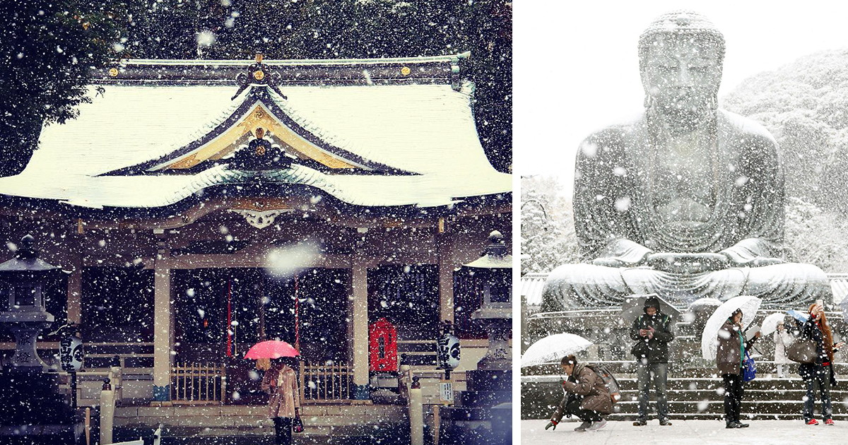 Tokyo, Which Hasn't Seen November Snow In Over 50 Years, Surprised To Wake Up In A Winter Wonderland