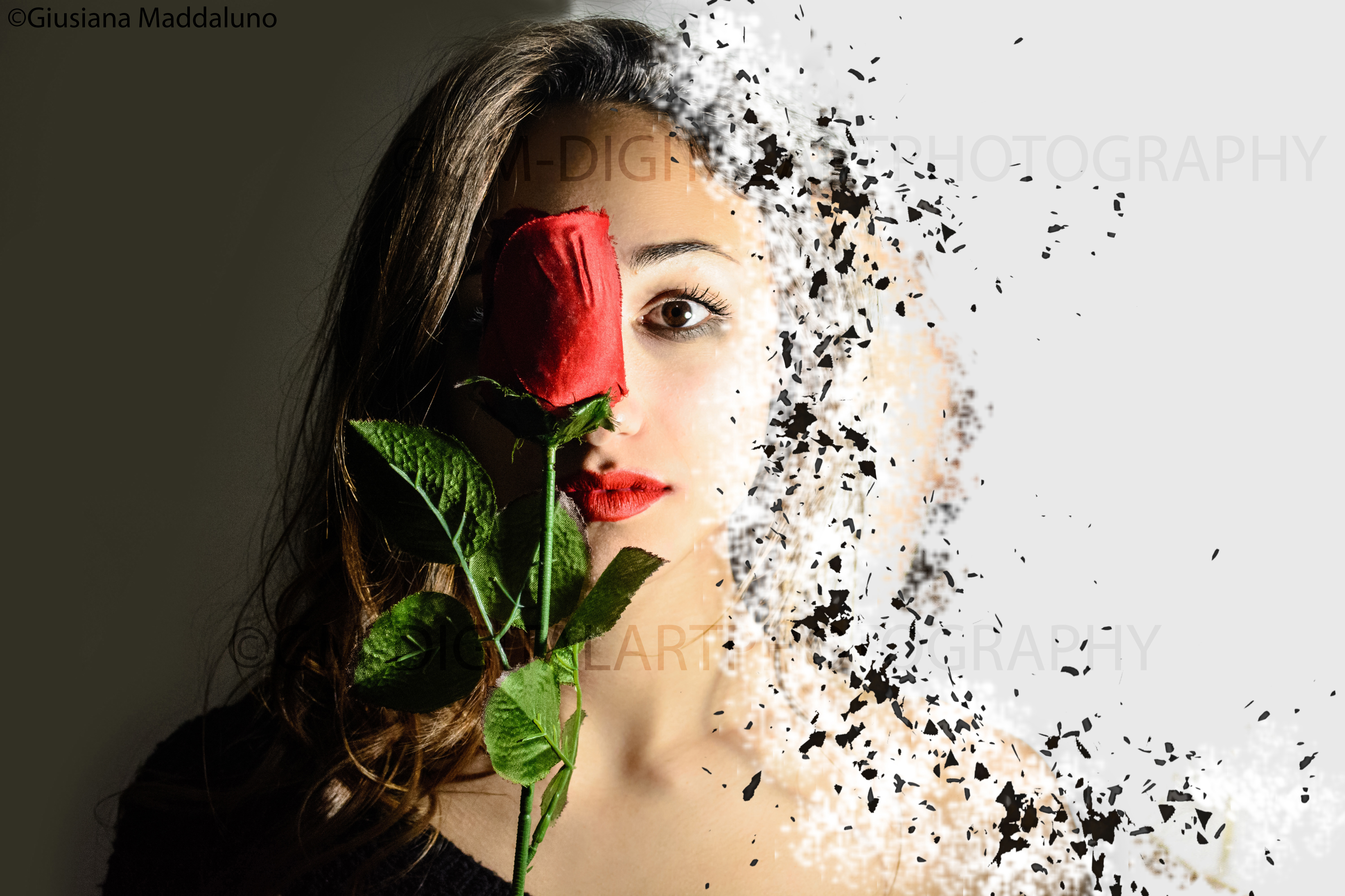 Young Photographer Created A Series Of Digital Art Photography To Say Stop The Violence!