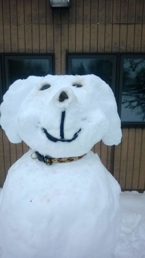 A Snow Puppy. This Was Located Outside Of A Local Veterinary Hospital. :-)