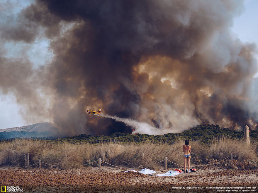 Honorable Mention, Environmental Issues: Wildfire At The Beach, Spain