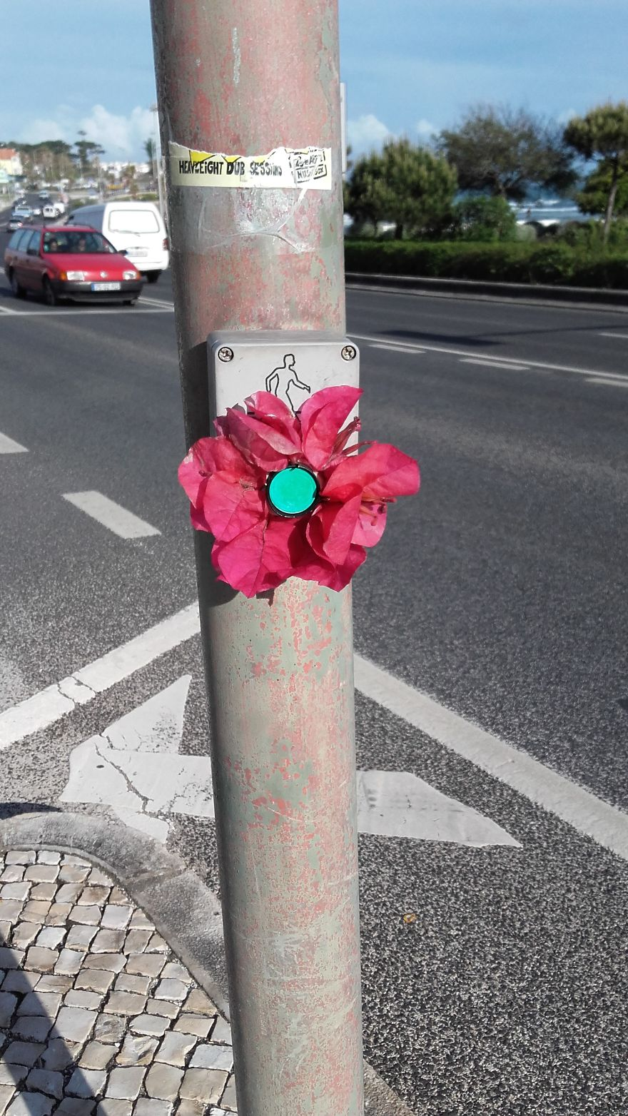 Street Artist Brings Nature Back To Cities