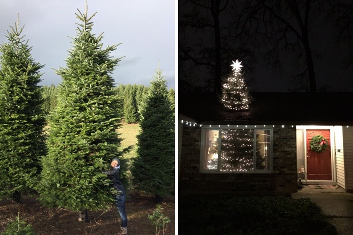 They Bought A 20ft Christmas Tree, And Found A Brilliant Way How To Fit It Inside