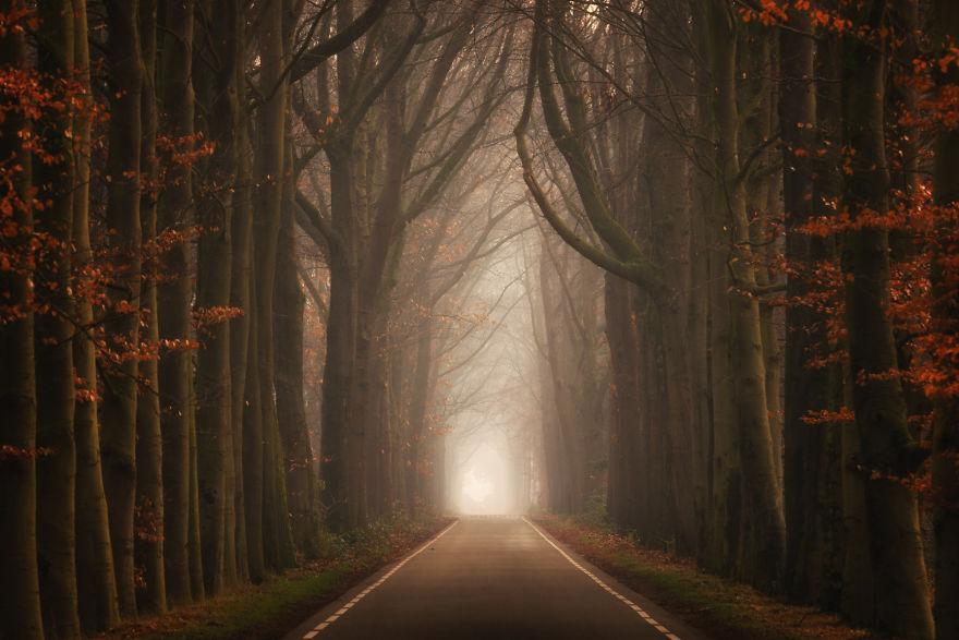 Dwarf Lane