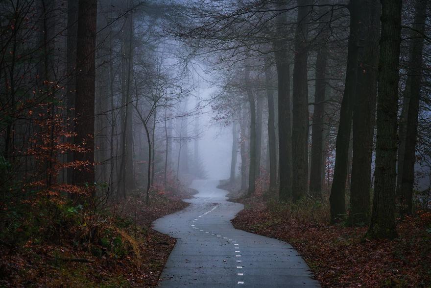 Curvy Path