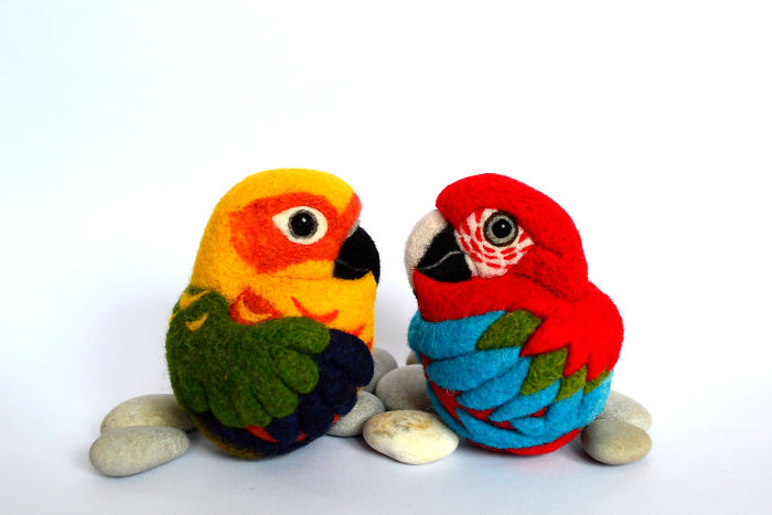 Colorful Pair Of Parrots - Jenday Conure And Red And Green Macaw