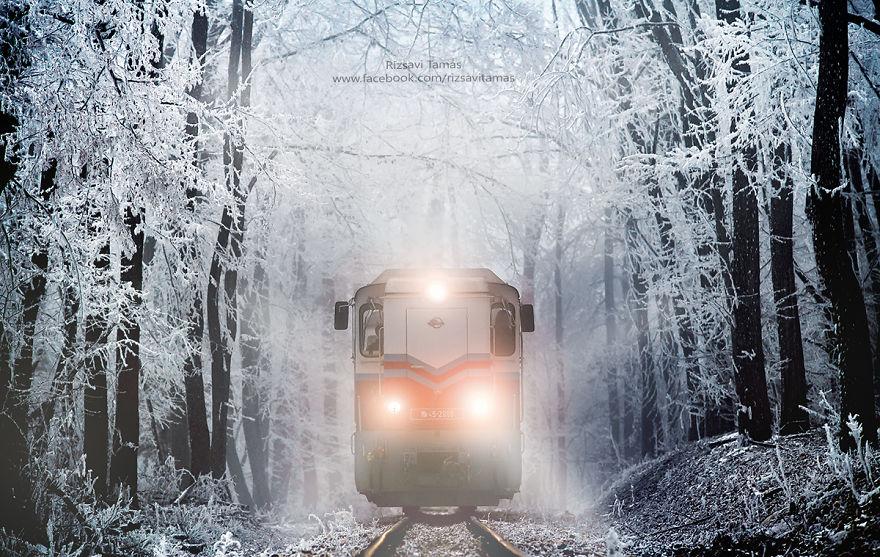 Rizsavi Tamás lenyűgöző fotói a téli köntösbe öltözött budai Gyermekvasútról