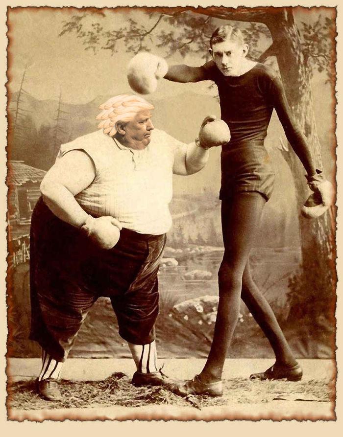 Punch Drunk Trump