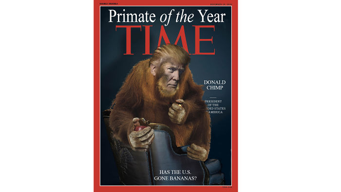 Primate Of The Year