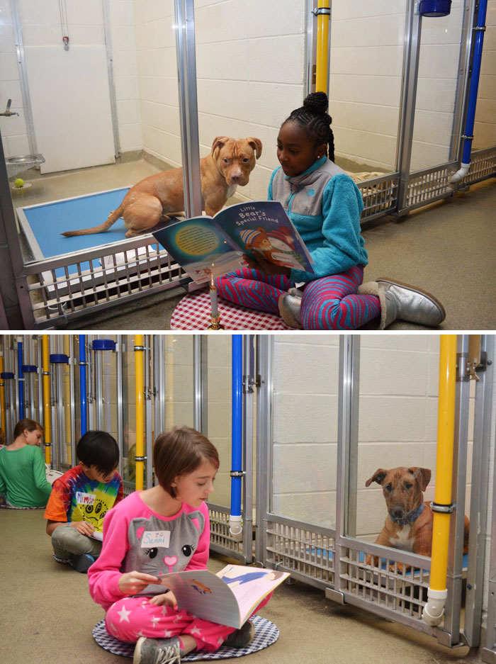 Animal Shelter Hosts A Children's Reading Program Where Kids Read To Shelter Dogs As A Way Of Preparing Them For Forever Homes