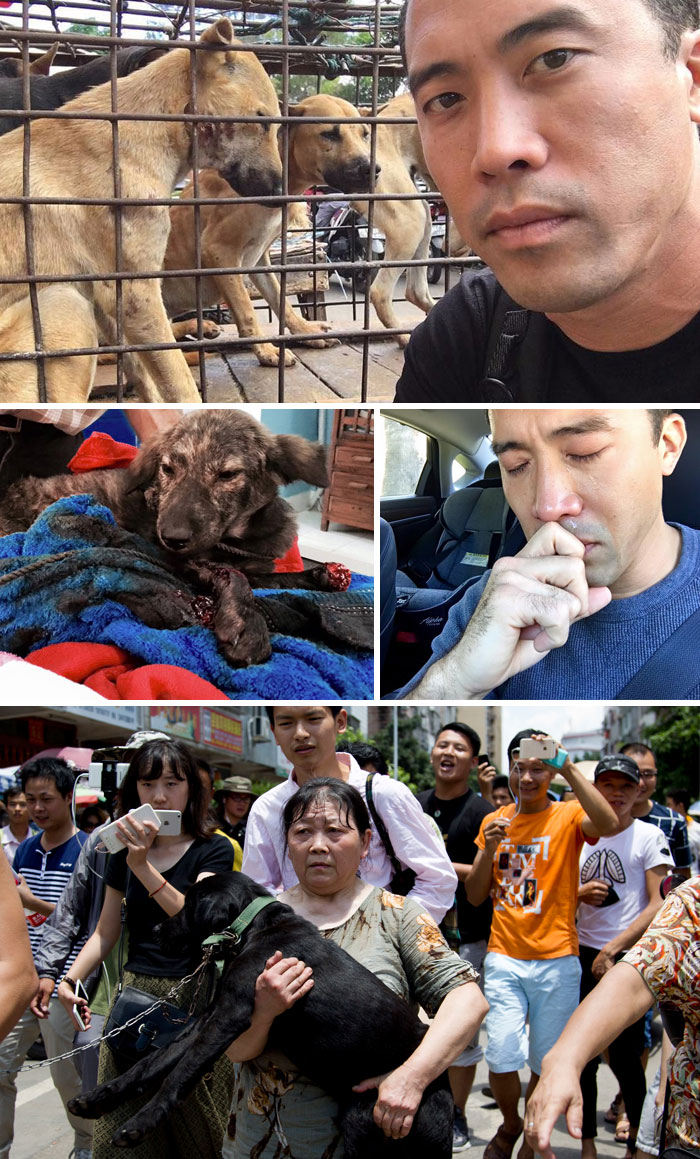 This Man Saved 1000 Dogs From Yulin Meat Festival Despite Being Beaten For This
