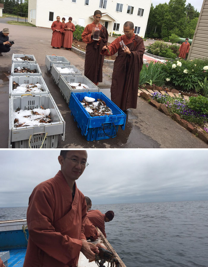 Monks Buy 600 Lbs Of Lobster, Release Them Into Ocean