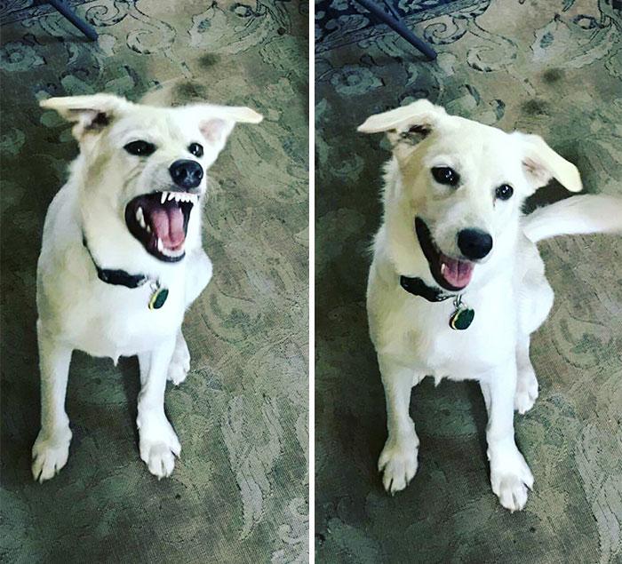 Antes y después de ser llamado un buen muchacho