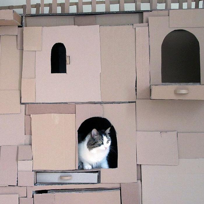 cardboard-ark-structure-cat-prefabcat-3