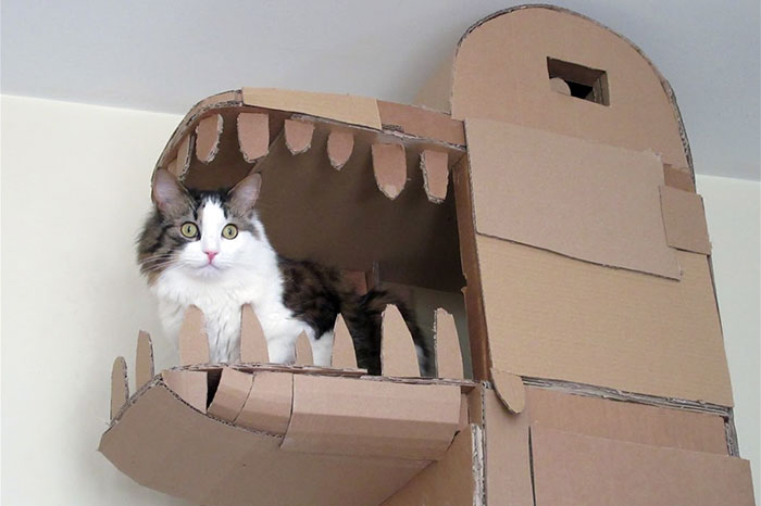 Human Builds A Dragon Shaped Cardboard House For His Cat In Order To Please His Master Bored Panda
