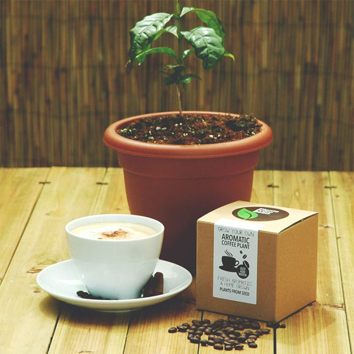 coffee-lover-gift-ideas-131-58413bd0a68c