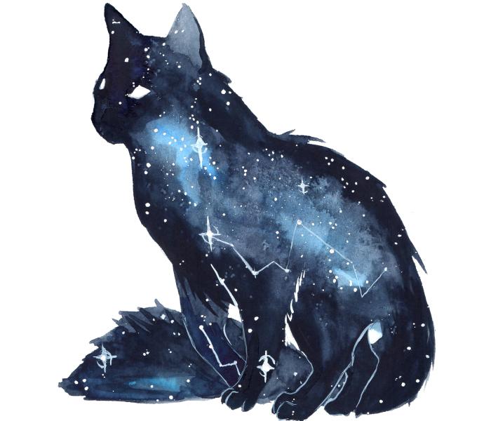 I Make Dreamy Galaxy Animals Using Watercolor