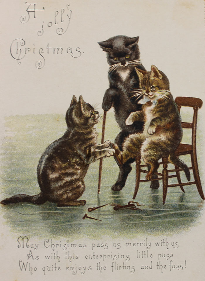 A Jolly Christmas. May Christmas Pass As Merrily With Us As With This Enterprising Little Puss Who Quite Enjoys The Flirting And The Fuss