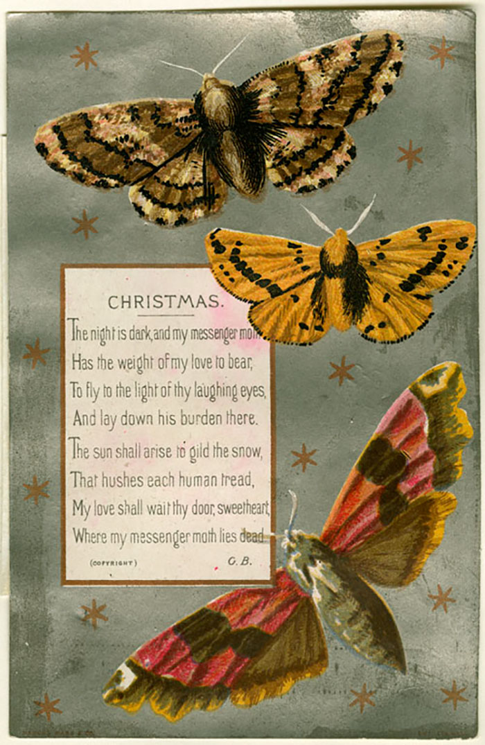 The Night Is Dark And My Messenger Moth Has The Weight Of My Love To Bear, To Fly To The Light Of Thy Laughing Eyes, And Lay Down His Burden There. The Sun Shall Arise To Gild The Snow, That Hushes Each Human Tread, My Love Shall Wait Thy Door, Sweetheart, Where My Messenger Moth Lies Dead