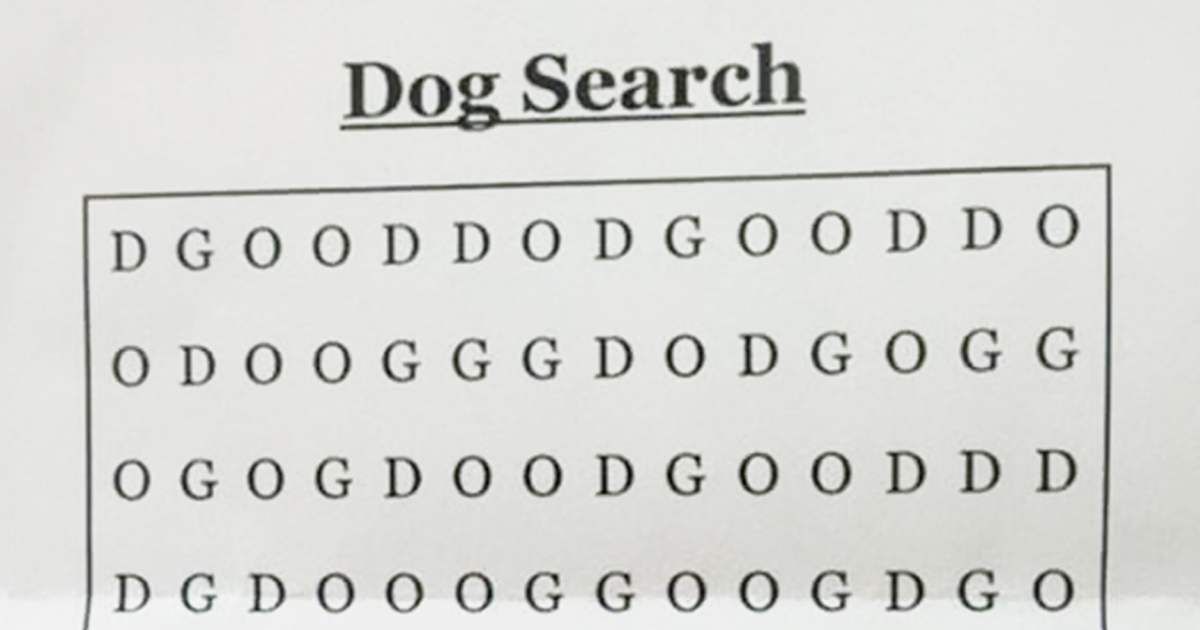 World S Hardest Word Search Dog