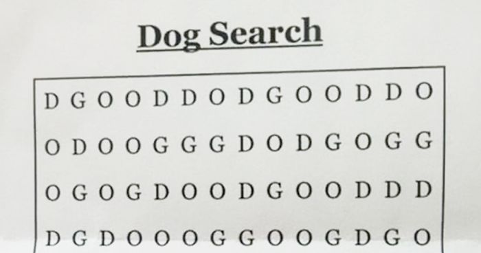 Can You Solve The Hardest Word Search Ever And Find The Dog
