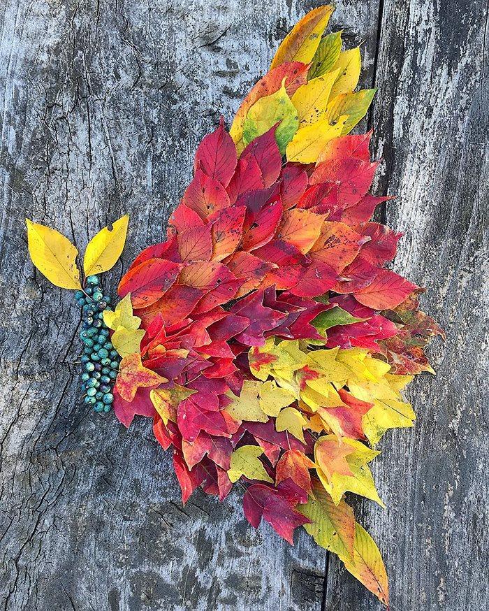 Fallen Leaf Art
