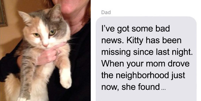 Dad Tells Daughter About Their Cat's Death, But Soon The Story Takes A Hilariously Unexpected Turn