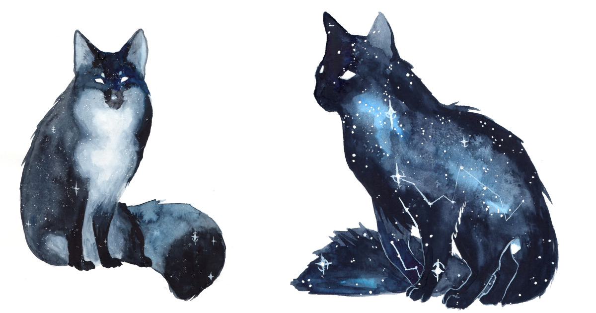 Dog And Cat Sillhuette Water Color
