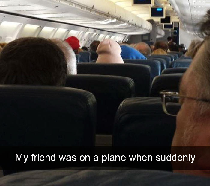 Funny Flight Post