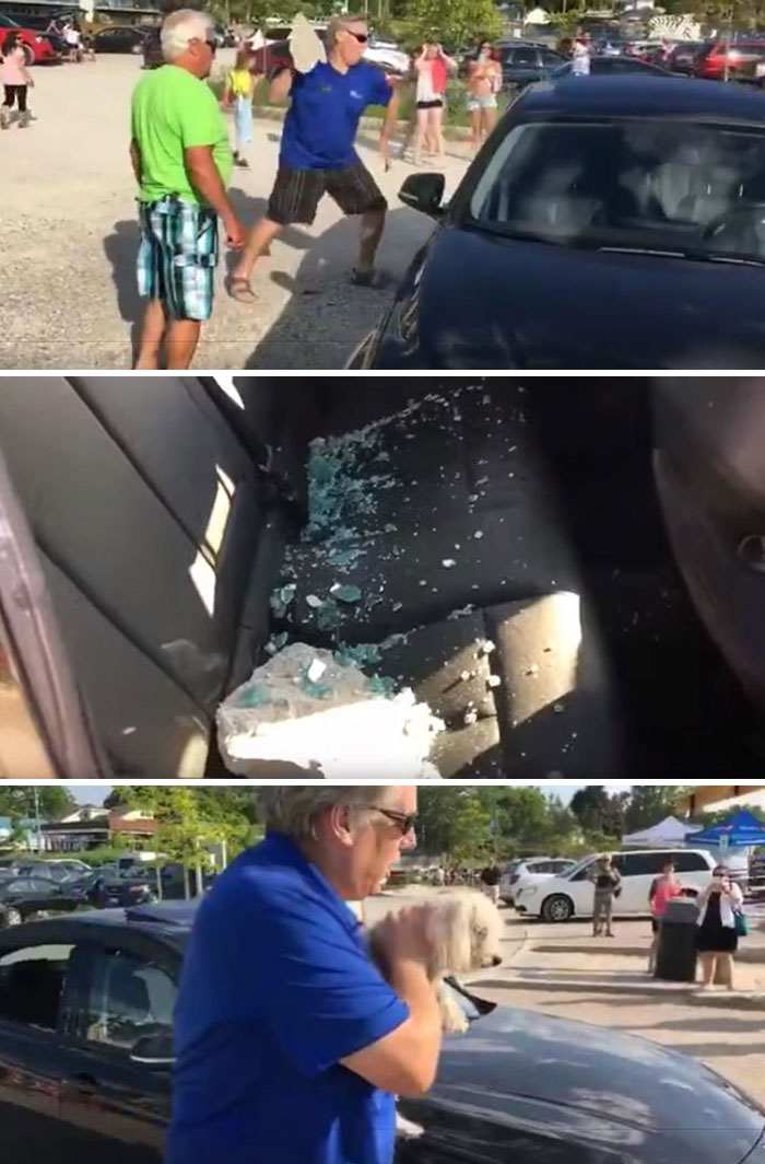 Guy Throws Stone At BMW Window To Free Dog Locked In Hot Car