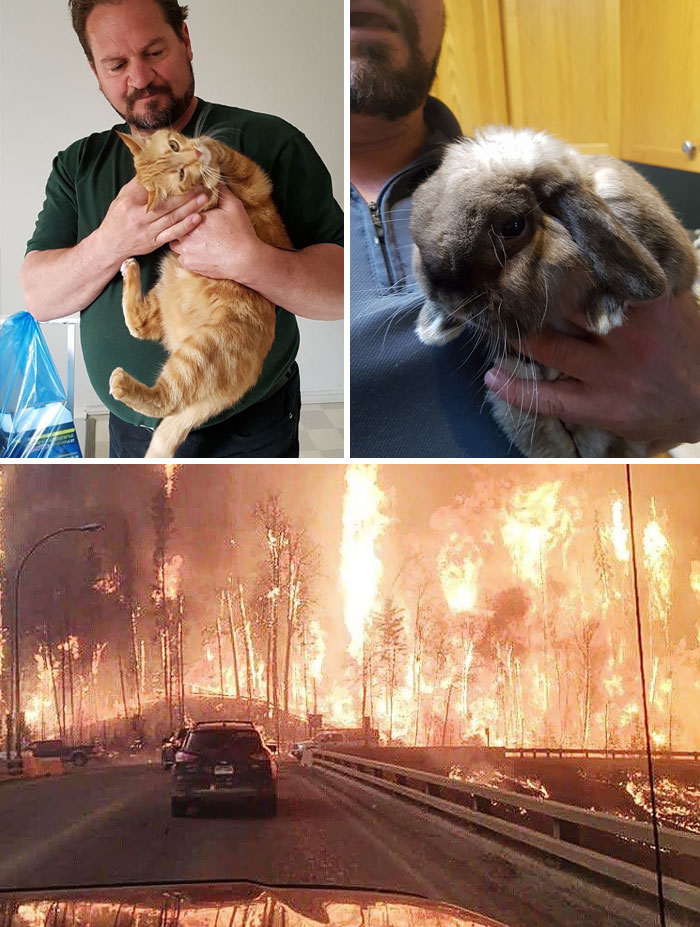 Man Refuses To Evacuate, Stays Behind To Feed All The Pets Left Behind In Wildfires