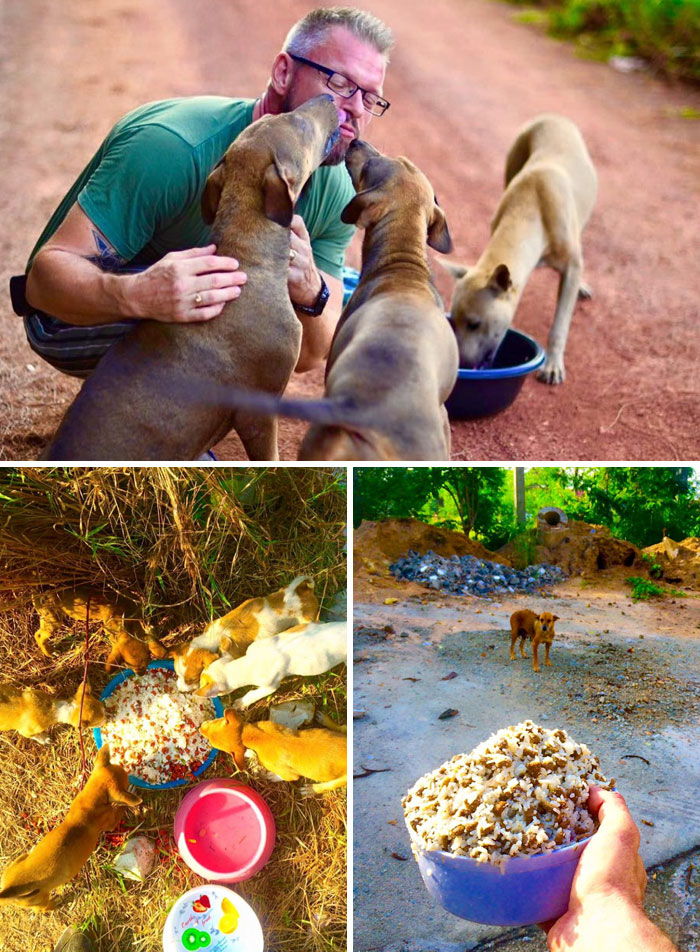 This Man Feeds 80 Stray Dogs Every Day Because He Can't Bear To See Them Starve
